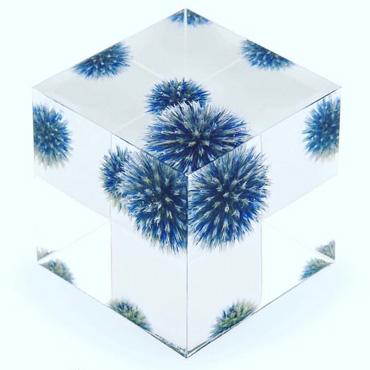 クリスタルアートリウム