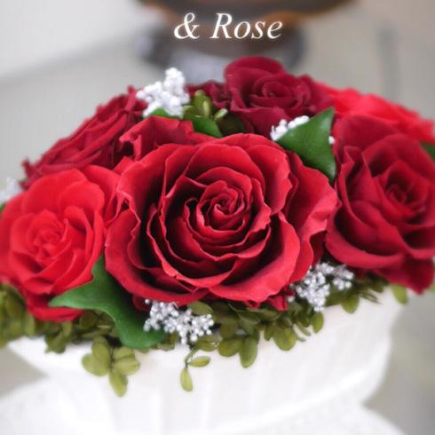& Rose(アンドローズ)の作品例